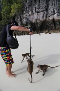 Island of Monkeys